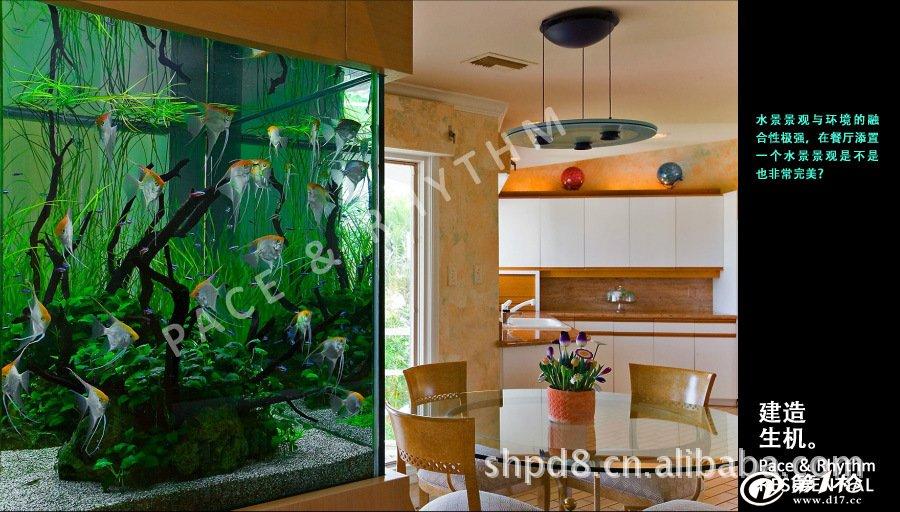 水景设计 水景工程 水草景观 生态水景 生态鱼缸 室内