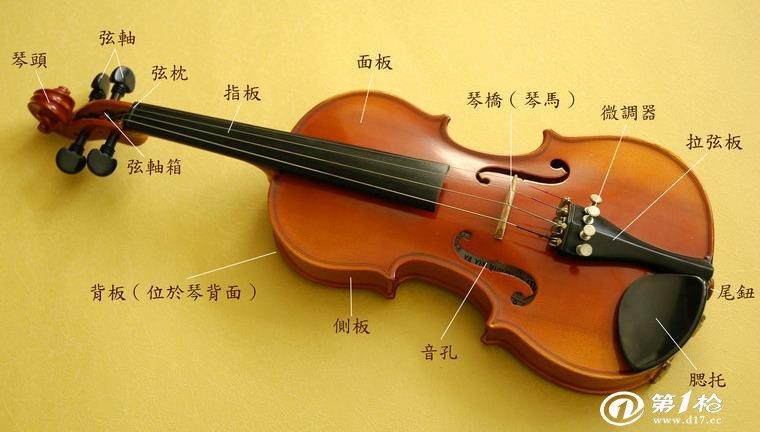 小提琴的结构图
